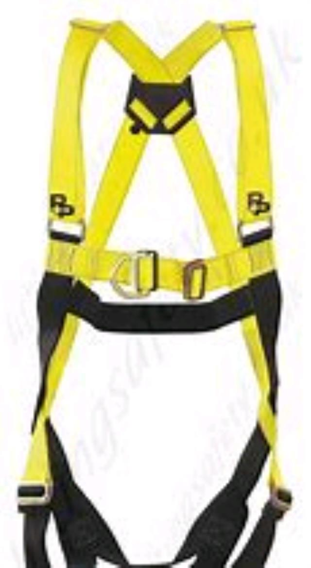 Where to find HARNESS, SAFETY in Eunice