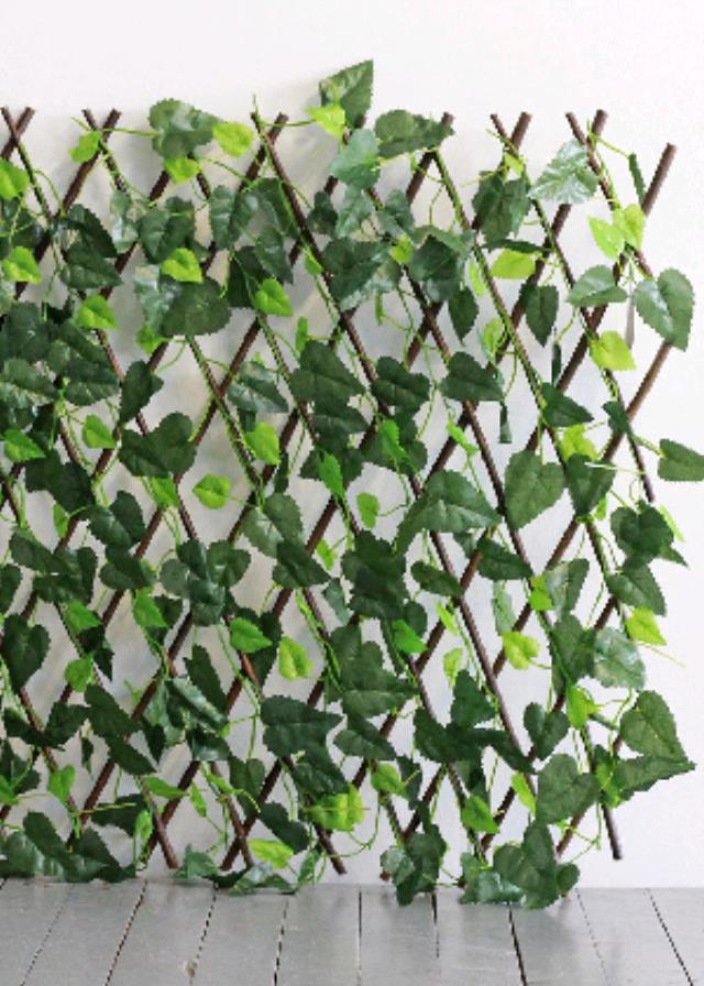 Where to find BACK DROP, LEAF LATTICE in Eunice